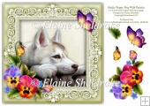 Husky Dog Pansies Butterfly 8 x 8 Card Topper With Decoupage