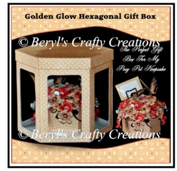 Golden Glow Posy Pot Keepsake Gift Box