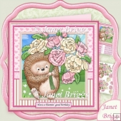 Flowery Hedgehog Valentine Birthday Get Well Kit