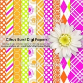 Citrus Burst Digital Paper Pack {A4 Size}