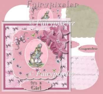 Baby Girl Bunny Card Front