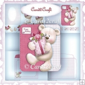 Parcel bear shaped card set