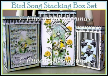 Bird Song Stacking Box Set with Coordinating Tags