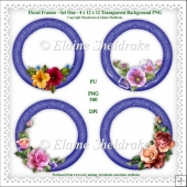 Floral Frames Set One 4 x PNG PhotoFrames