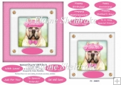 Spectacle Dogs In Pink Hats (2) - 6 x 6 Card Topper & Greetings