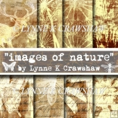 IMAGES OF NATURE - 8 digital A4 background papers