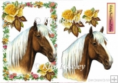 palomino horse with yellow roses in flower frame