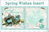 Spring Wishes Easter Card Insert
