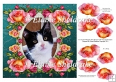 "Black & White Cat & Roses - 8"" x 8"" Card Topper + Decoupage"