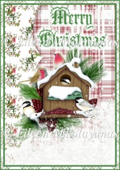 Nature's Christmas Backing Background Paper