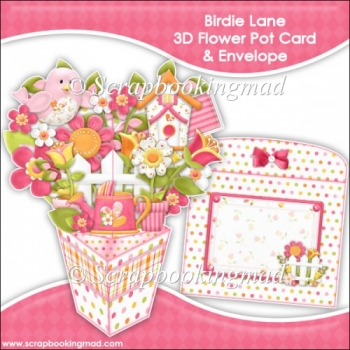 Birdie Lane 3D Flower Pot & Envelope