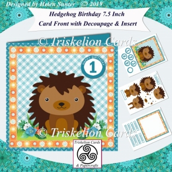 Hedgehog Birthday or New Baby 7.5 Card Front Decoupage & Insert