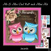 Mr & Mrs Owl 7x7 inch Mini Kit