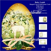 Baby Lamb - Shaped Easter Egg Card Kit With Insert & Matching En