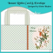Instant Robin Card & Envelope