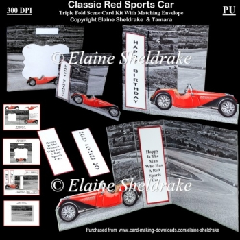 Classic Red Sports Car For Male Or Female Triple Fold Scene Kit