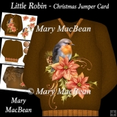 Little Robin - Christmas Jumper Card
