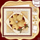 GOLD & WHITE CHRISTMAS POINSETTIA 7.5 Decoupage & Insert Kit
