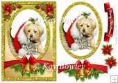 cute puppy and kitten in santa hat card front