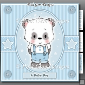 Baby Boy Panda Mini Kit