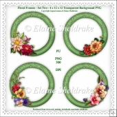 Floral Frames Set Two - 4 x PNG Photo Frames