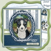 BORDER COLLIE PUPPY 7.5 Pyramage & Insert Kit