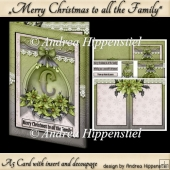A5 Card with Insert Green Poinsettia