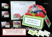 Tabby Cat & Poppies Pop-Up Box Card Kit & Matching Envelope