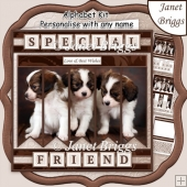 PUPPIES 7.5 Alphabet and Age Quick Card Kit Create Any Name