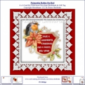 Poinsettia Christmas Robin On Red 6 x 6 Card Kit + Insert etc.