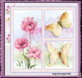 Pink poppy and butterfly