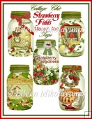 Cottage Chic Strawberry Fields Mason Jar Tags
