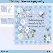 Healing Prayers Sympathy Mini Kit