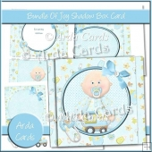 Bundle Of Joy Shadow Box Card