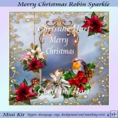 Merry Christmas Robin Sparkle