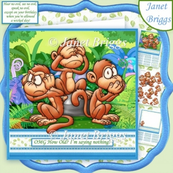 3 WISE MONKEYS OMG HOW OLD 7.5 Humorous Decoupage Kit
