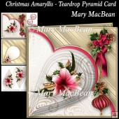 Christmas Amaryllis - Teardrop Pyramid Card