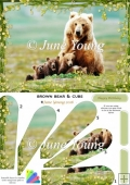 Brown Bear & Cubs