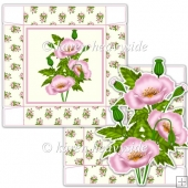 Pink Poppy 5 x 5 Square Box