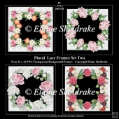 Floral Lace Frames Set Two - 4 x PNG Photo Frames