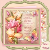 Blush Of Iris & Verse For Friend 7.8 Decoupage Kit