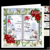 Little Birds At Christmas Mini Kit