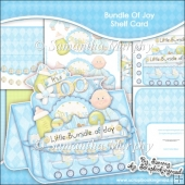 Bundle Of Joy Baby Boy Shelf Card & Card Box