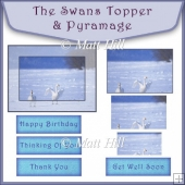 The Swans Topper and Pyramage