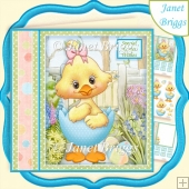 BABY EASTER CHICK 7.5 Decoupage & Insert Kit