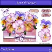 Box Of Pansies