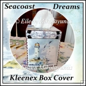 Seacoast Dreams Kleenex Tissue Box Cover with Directions