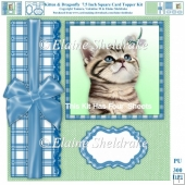 Kitten And Dragonfly 7.5 Inch Square Card Topper Kit + Tags