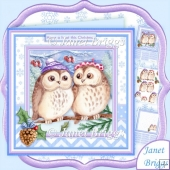 Have a Hoot This Christmas 8x8 Decoupage & Insert Mini Kit