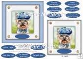 Spectacle Dogs In Blue Hats (3) - 6 x 6 Card Topper & Greetings
